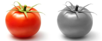 colore-pomodoro